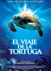 El viaje de la tortuga